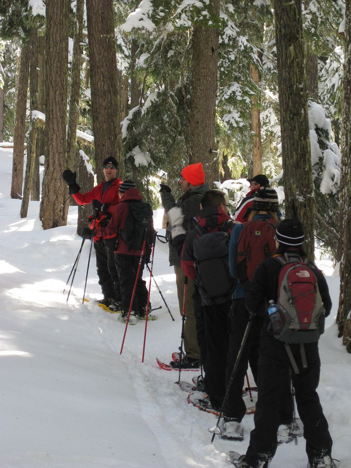 Getting some exercise - from the Snowshoe Trip to Twin Lake 2013 photo gallery.