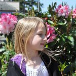 Lexi and rhododendrons